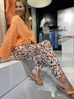Fancy pants - 02